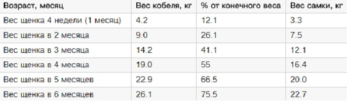 таблица веса щенка немецкой овчарки по месяцам
