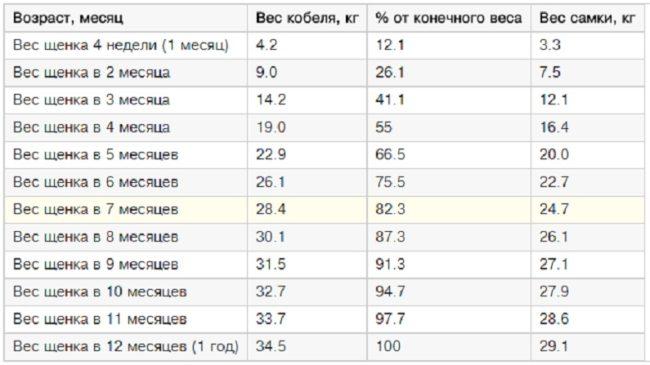 Таблица веса для щенка НО по месяцам