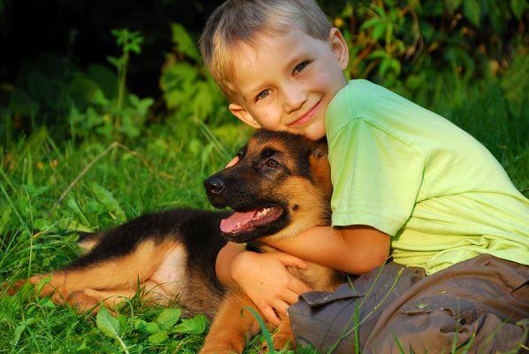Ребенок обнимает щенка немецкой овчарки
